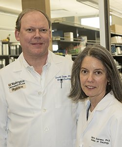 Personalized melanoma vaccines developed at Washington University in St. Louis have been shown in a small clinical trial to marshal a powerful immune response against unique mutations in patients' tumors. Pictured are Gerald Linette, MD, PhD, and Beatriz Carreno, PhD, who led the team that developed the vaccines.